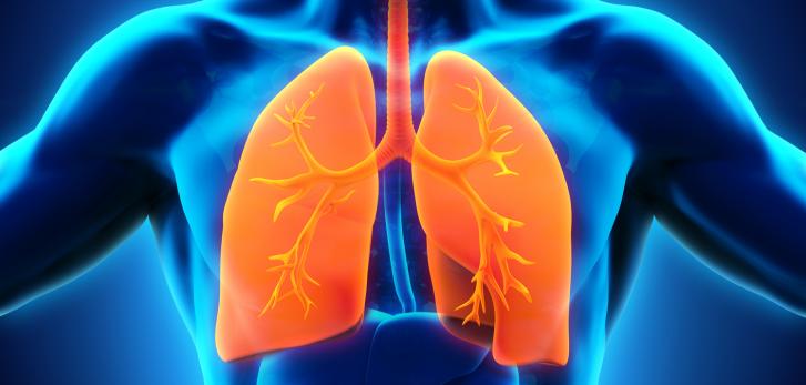 леген